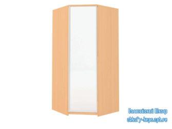 Угловой стандартный шкаф купе с распашной дверью