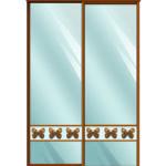 Двери для шкафов купе зеркало + вставка - фотопечать на стекле