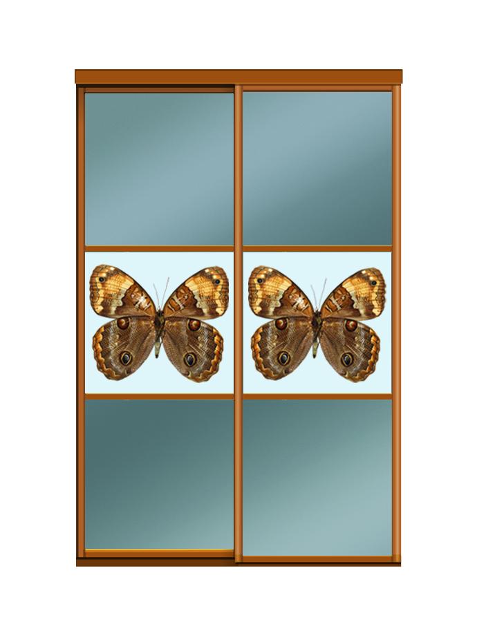 Двери для шкафов купе зеркало бронза + фотопечать на стекле