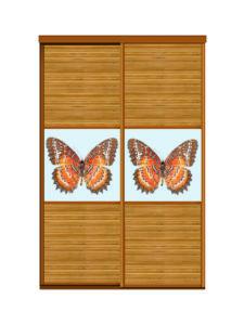 Двери для шкафов купе бамбук + фотопечать