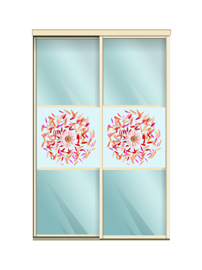 Двери купе  зеркало+лепестки бело-красн