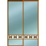 Двери для шкафов купе зеркало бронза + вставка - фотопечать на стекле