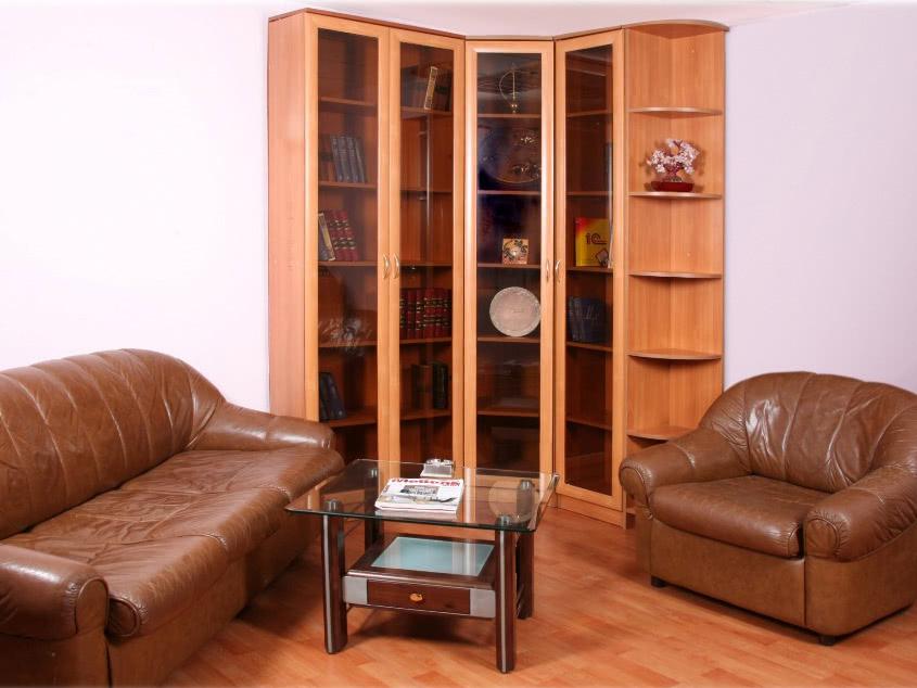Угловой распашной шкаф для книг