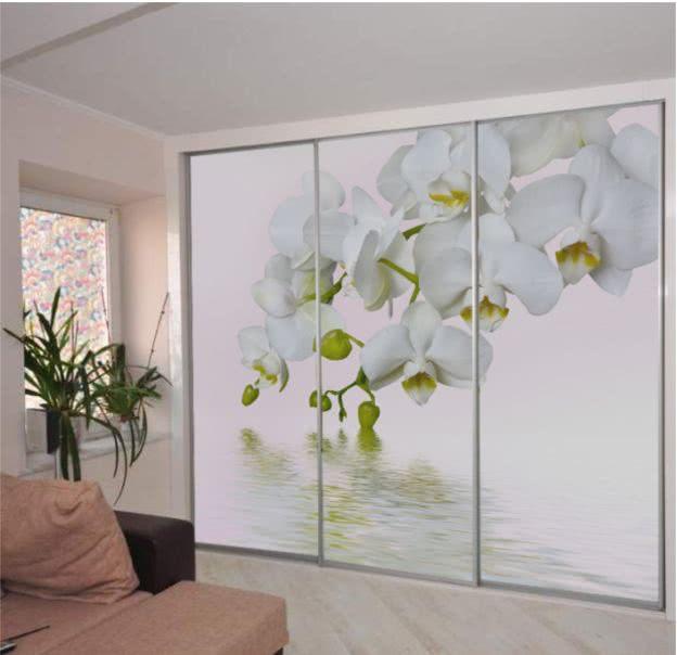 Шкаф с фотопечатью орхидея