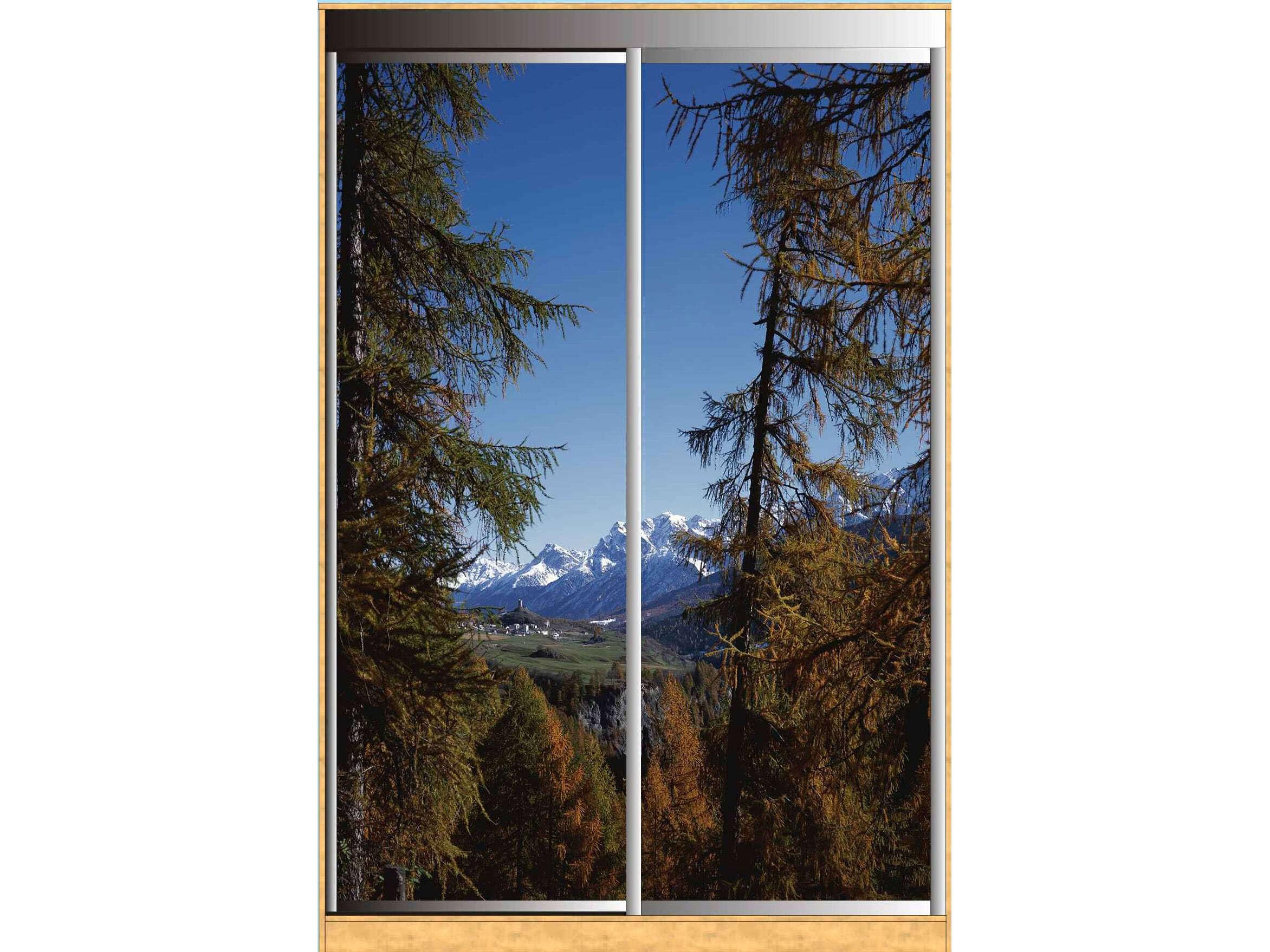 Раздвижные двери для шкафа купе с фотопечатью