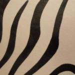 2421 zebra 2202
