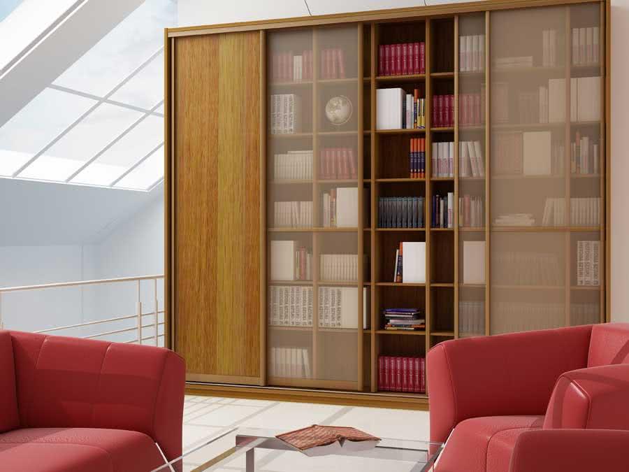 Большая библиотека с матовыми дверями-купе