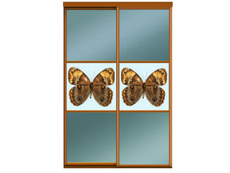 Двери купе зеркало бронза (графит) деленные на 3 равные части со вставкой